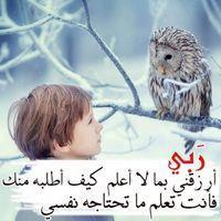 محمد حسام
