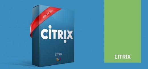 Citrix Box,xenapp,citrix,server,ica,symantec,libraries,license,installer,publish,console,client,publisher,wfshell