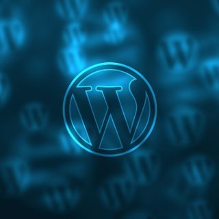 WordPress plug-in; An installation already exists